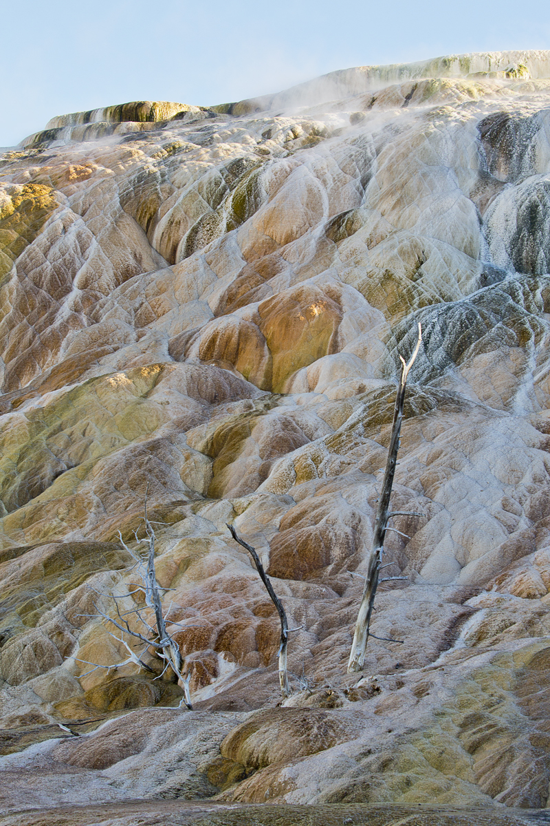 Mammoth Hot Springs, N.P. Yellowstone